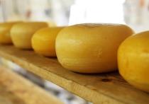 В Воронеже уничтожено более 5 килограммов санкционного сыра