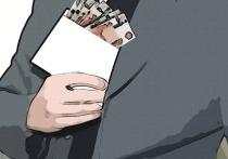 «Взял на лапу — пошел по этапу»: ЛДПР собирает пикет против коррупции