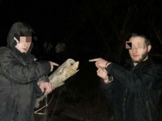 Двое волгоградских студентов попались на закладке наркотиков
