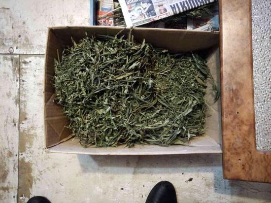 В Тверской области задержали мужчину с коробкой марихуаны