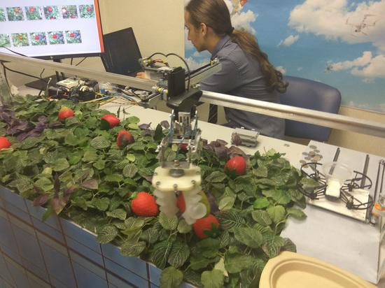 Петербургские школьники победили на Всемирной олимпиаде роботов