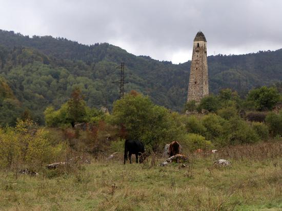 Границу между Чечней и Ингушетией считать установленной:  вердикт КС