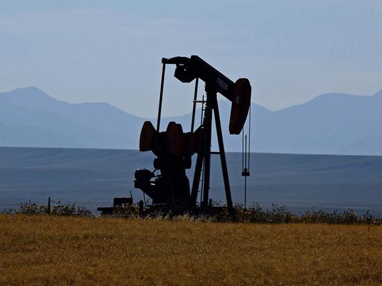 США победили ОПЕК: цены на нефть упадут до $45