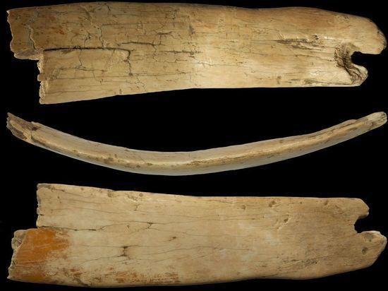 В Денисовой пещере на Алтае нашли головной убор из бивня мамонта