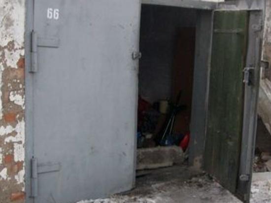 Калужские полицейские нашли в одном из гаражей Кондрово шесть кустов конопли