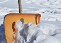Житель Барнаула поссорился с мальчиком, а потом отбивался лопатой от его отца