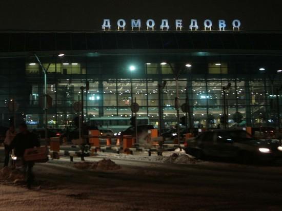 Появился список пострадавших в ДТП в аэропорту «Домодедово»