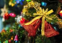 15 декабря для новокузнечан заработают ёлочные базары