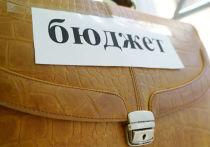 На федеральные деньги в Ярославской области выполнят социальные программы
