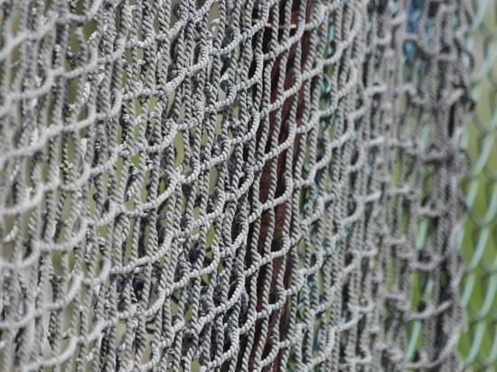 Принят новый закон о любительской рыбалке: регистрировать придется каждую сеть