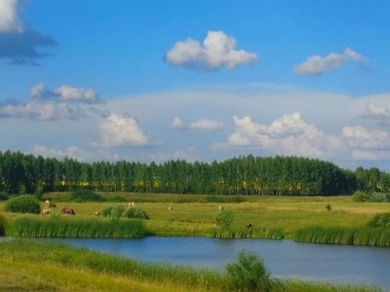 Тамбовская область вновь возглавила экологический рейтинг России