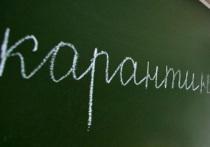 Под Воронежем из-за вспышки пневмонии закрыли школу