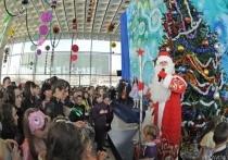 Волгоградцев ждет новогодний развлекательный нон-стоп