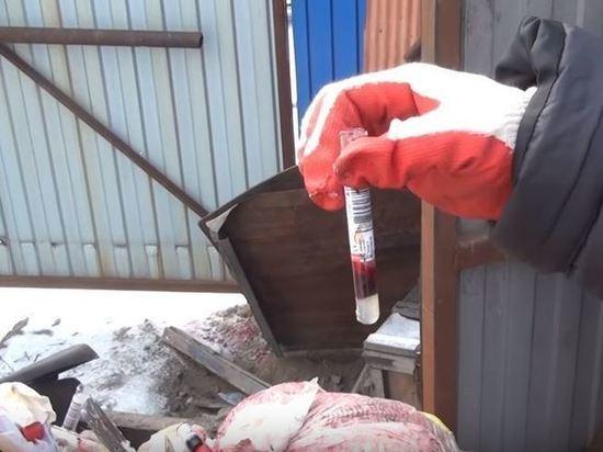 В появлении «кровавой свалки» медицинских отходов оказался замешан омский «Университет экологических проблем»