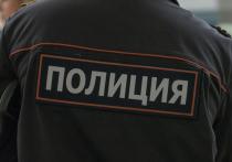 У задержанного в Москве после стрельбы по трамваям изъяли пистолет