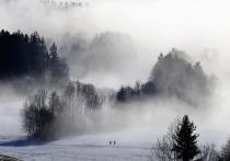 В Воронеже похолодает на выходных