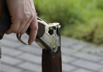 Бийчанка хранила дома незарегистрированный обрез одностволки
