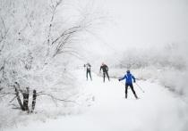 В Волгограде открыт прокат лыж в Комсомольском саду