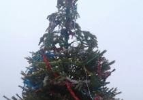 В Яшкуле установили самую уродливую елку Калмыкии