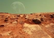 Американский эволюционный биолог Скотт Соломон из Университета Уильяма Марша Райса издал книгу, в которой рассказал, как могли бы измениться потомки первых колонизаторов Марса много поколений спустя