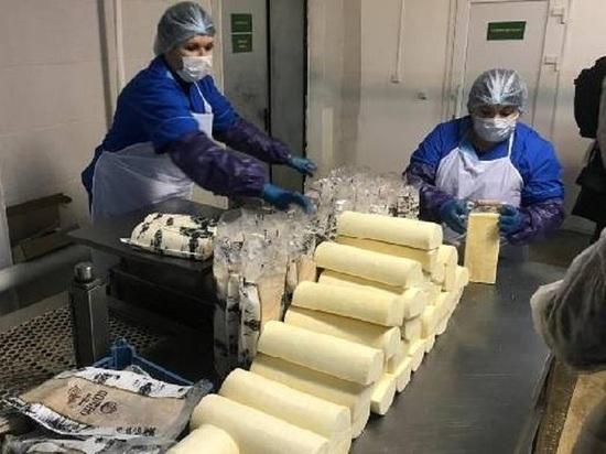 Новый цех по переработке молока и производству сыров открылся в Тамбовской области