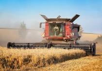 Эксперты РАНХиГС опровергли данные Росстата о высоких темпах роста отечественного сельского хозяйства