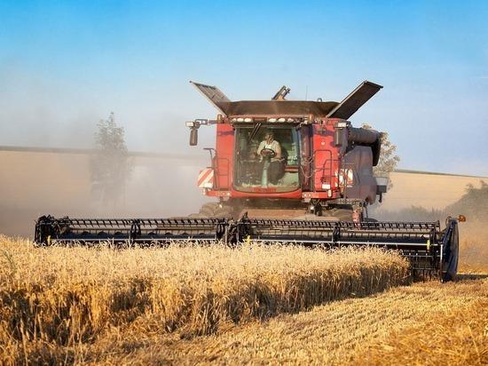 Данные Росстата о небывалом сельскохозяйственном росте оказались завышенными
