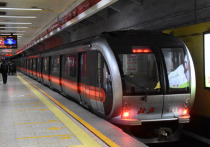 Перспективы воронежского метро обсудили в Японии