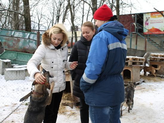 Зампред Госдумы РФ Тимофеева: принятый закон о животных защитит людей