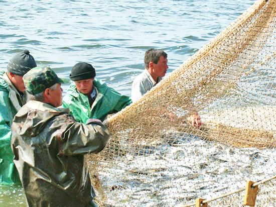 В Бурятии деревенских рыбаков выгнали с насиженных мест и запустили туда «титановских»