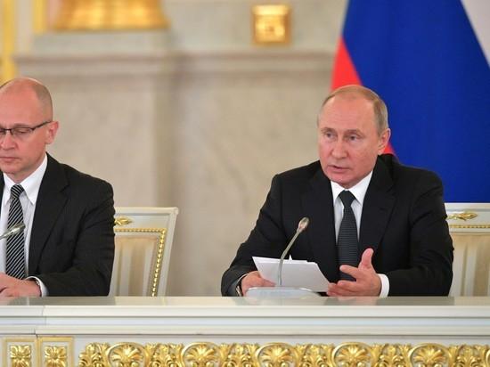 Путин признал: лесной бизнес в России криминализован