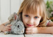 Взаимодействие с домашними животными в юные годы защищает детей от аллергии не только на шерсть, но и на пыльцу