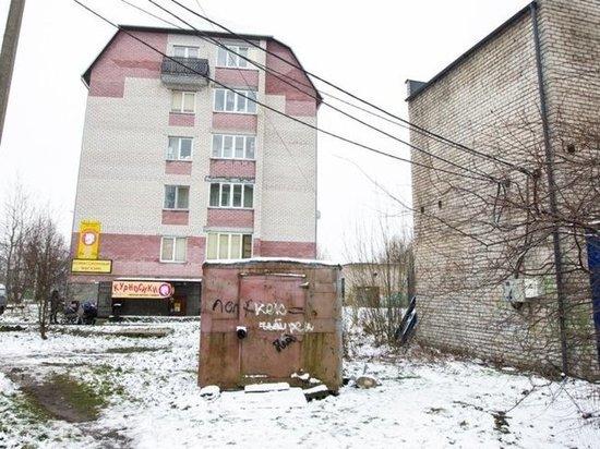 Исчез из вида: как 6-летний мальчик погиб в собственном дворе под Калининградом