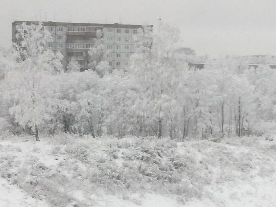 Сегодня в Смоленской области до минус девяти мороза, слабая метель