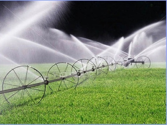 Калмыцкая фермерша наказана за подлог