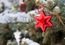 Как возобновилась традиция отмечать Новый год, рассказали волгоградцам