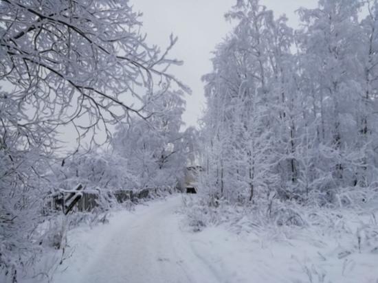 Завтра в Смоленской области будет до минус 12 мороза