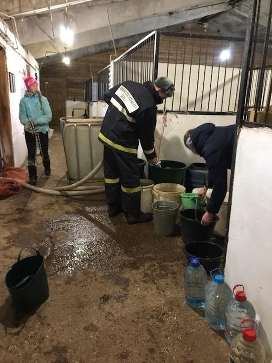 Пожарные в Кирове спасли лошадей от смерти