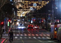 Почему сербская оппозиция выступает против новогоднего украшения Белграда