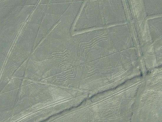 Канадские археологи назвали возможное предназначение геоглифов Наски