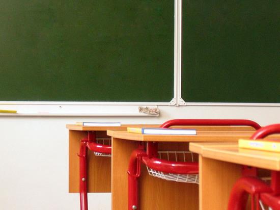 Психологи объяснили, почему школьники готовы погибнуть из-за