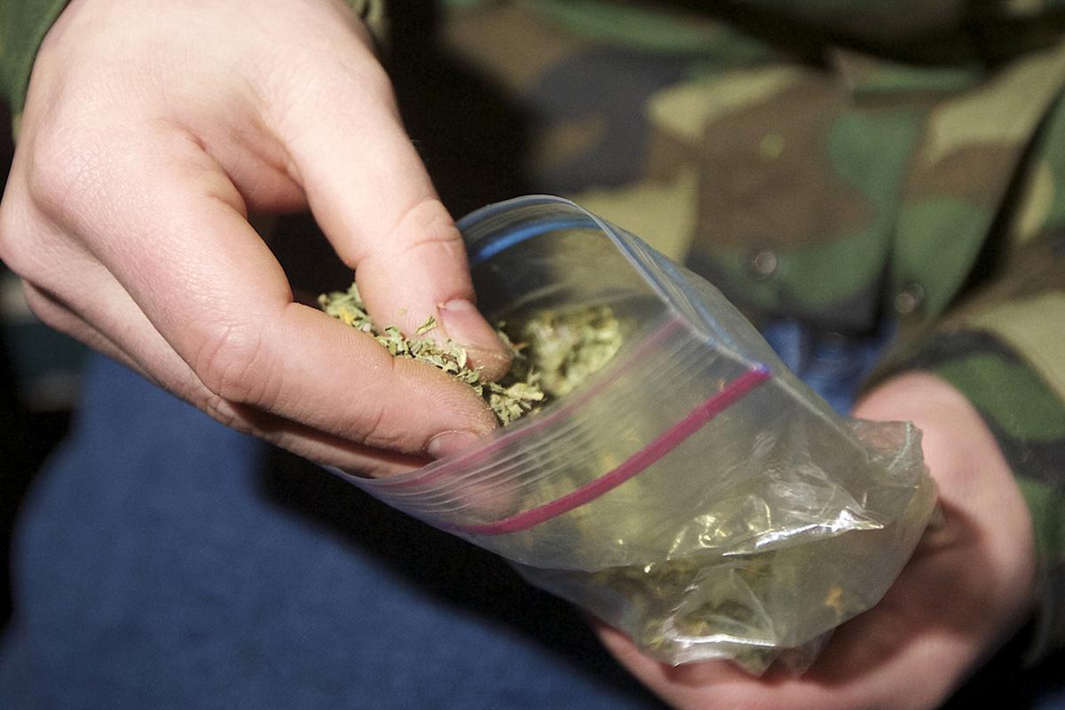 Наказание за хранение марихуаны семена канабиса первый