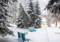 Санаторий «Барнаульский» — концентрация силы, опыта, технологий и природы