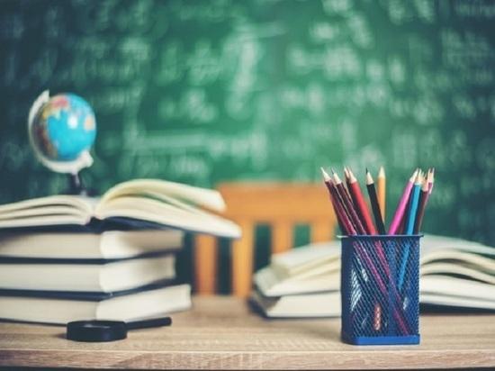 «Происходит родительский террор»: педагоги барнаульского лицея вновь ответили Ульяне Меньшиковой