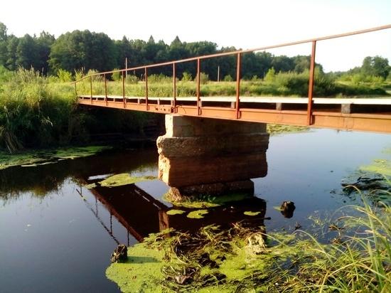 В Ульяновской области украли пешеходный мост через реку Барыш