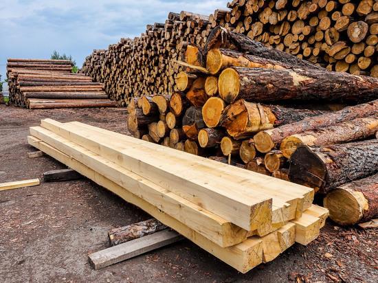 В ТПП ВС обсудили лесную отрасль Приангарья