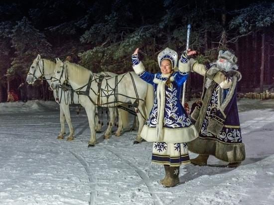 Куда в Воронеже сводить детей на новогодних каникулах