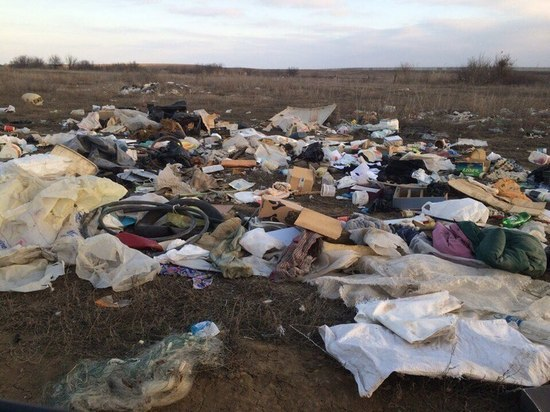 Сергей Морозов поручил Радику Харисову заняться мусором
