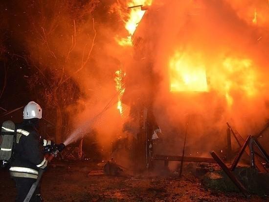 За сутки при пожарах в Тамбовской области погибли два человека