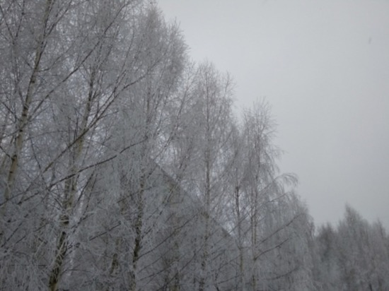 Сегодня в Смоленской области около нуля, слабый снег